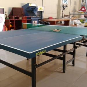 "Tênis Mesa Profissional ""Ping Pong"""